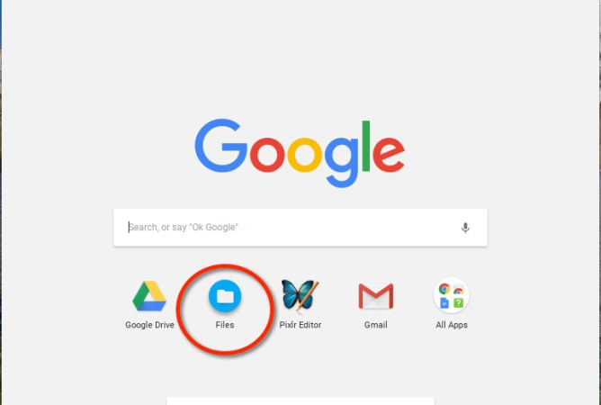 Chromebook Files