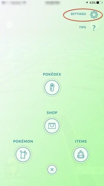 Pokemon Settings in game