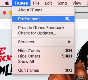 iTunes preferences