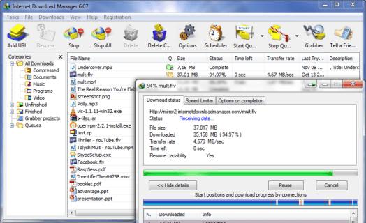 torrent to idm file