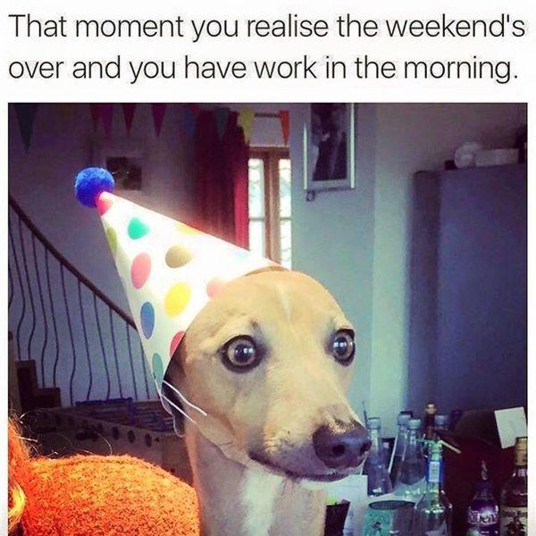В тот момент вы понимаете, что выходные прошли