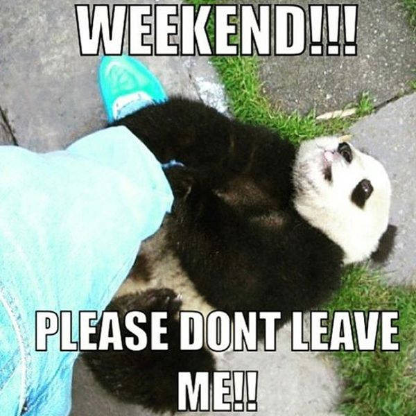 Weekend please dont leave me