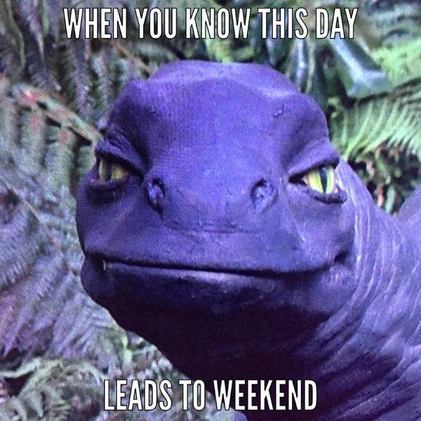 Когда ты знаешь, что этот день ведет к выходным