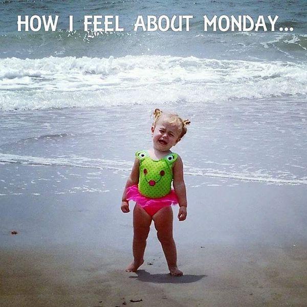 как ты относишься к понедельнику