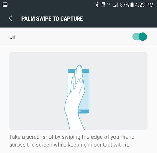 palmswipe