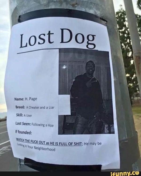 Потерянная собака...
