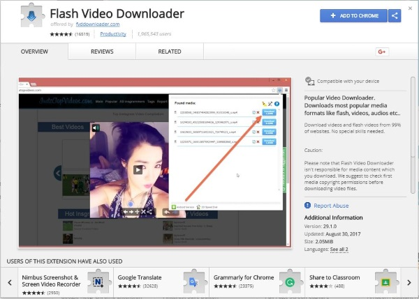 Download From Flash