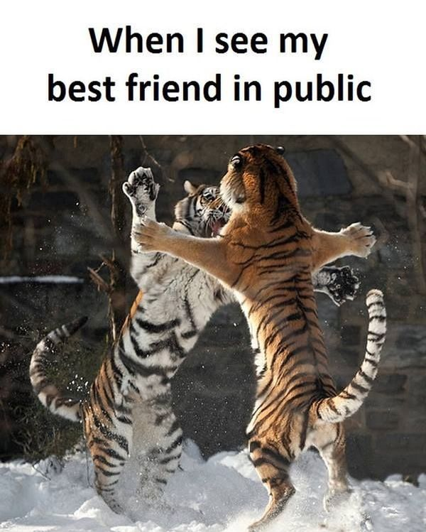 When I see my best friend in public