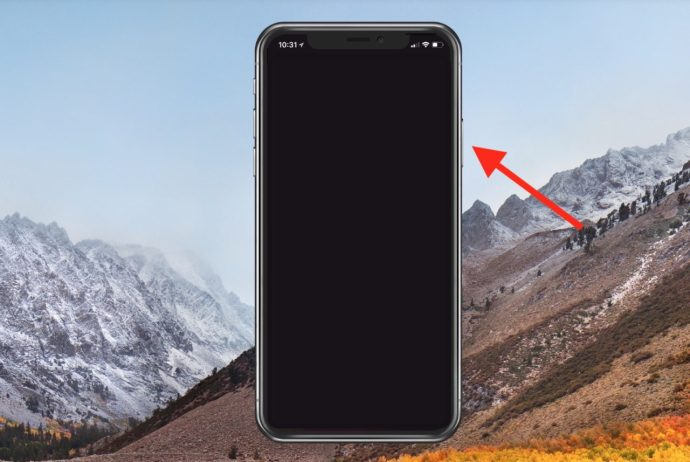 iPhone X Side Button