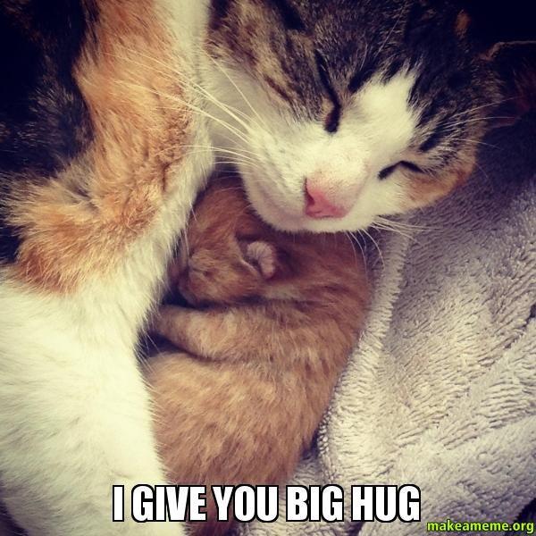 Excellent meme with a big hug