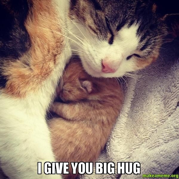 Superior big hug meme