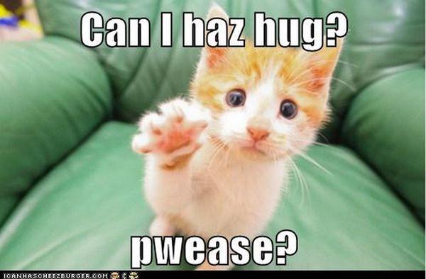 Big cute hug meme