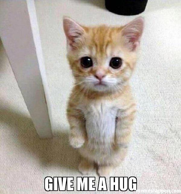 Wonderful hug my meme