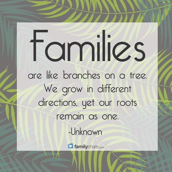 Семьи подобны ветвям на дереве.