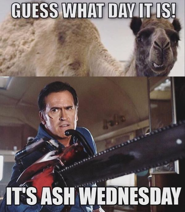 Wednesday Hump Day Funny Pictures 4