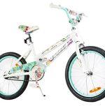 Tauki 20 Inch Girl Bike
