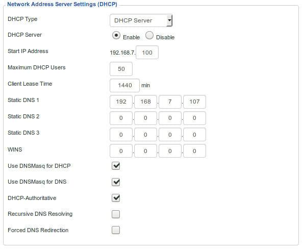 Pi Hole Router DNS