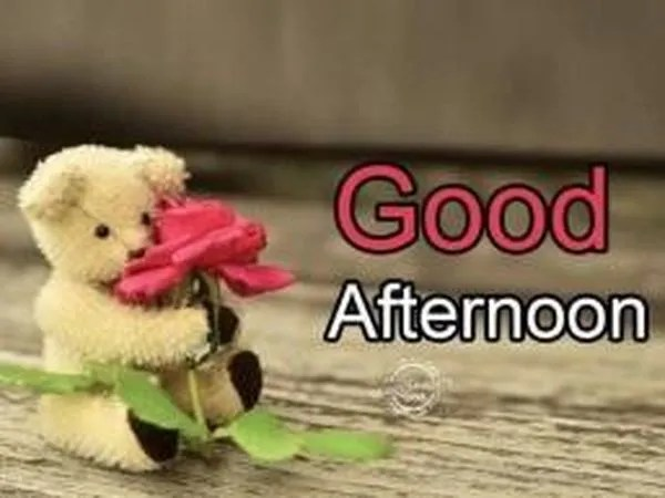 Cute Good Afternoon Images to Use with Love 1