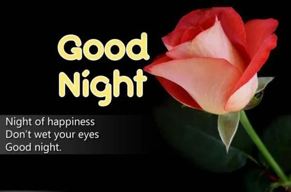 Good Night Pictures to Download for Free 2