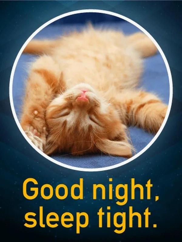 Сонные спокойной ночи картинки для вас 2