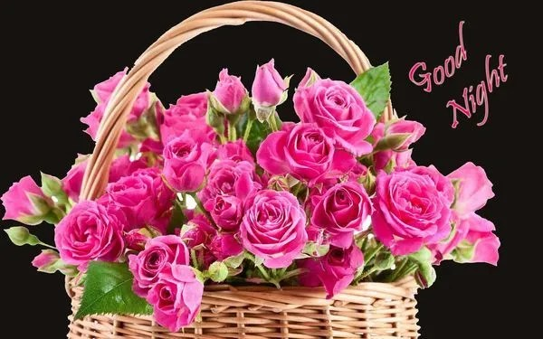 Useful Good Night Images with Nice Flowers 1