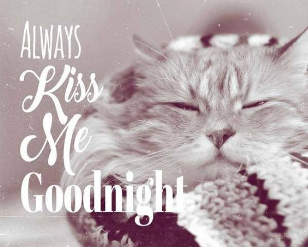 Good Night Images to Sleep Well