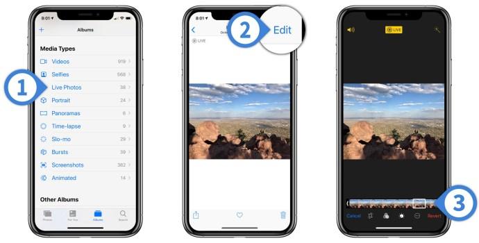 convert live photo still iphone