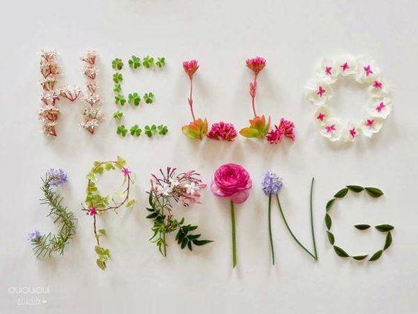Joyful Images Showing Spring Time