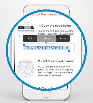 TrapCall Code