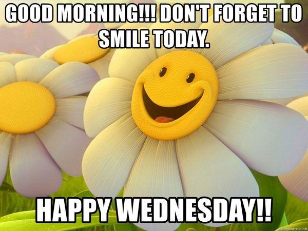 Cool Wednesday, morning, meme 2