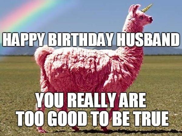 Funny Happy Birthday Husband Meme 2