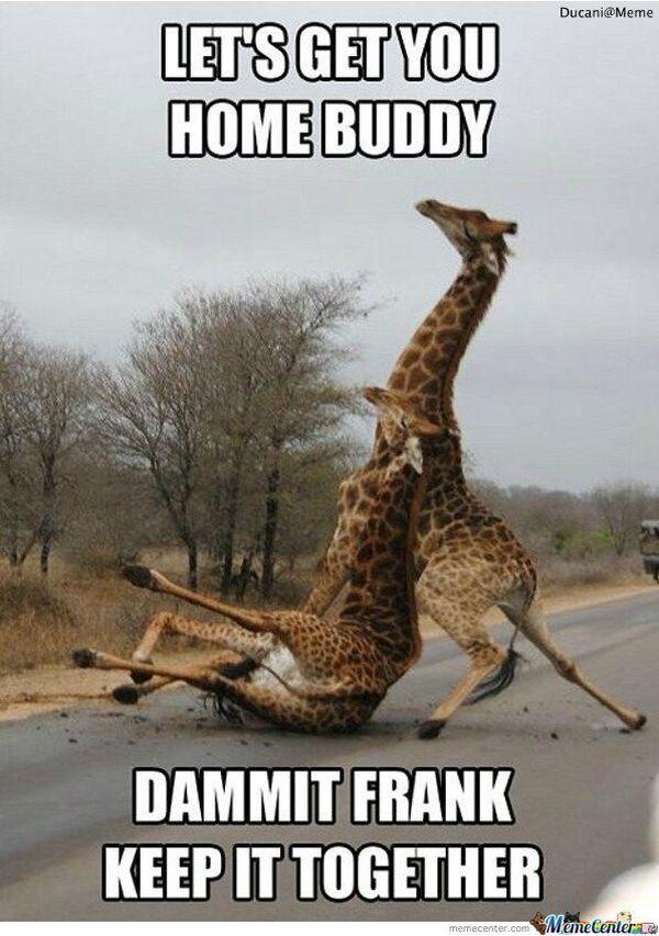 Fun Saturday night meme 2