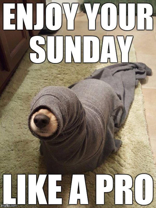 31++ Funny Memes Sunday - Factory Memes