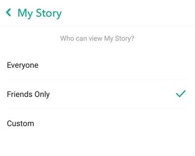 wie man eine private Geschichte auf Snapchat macht