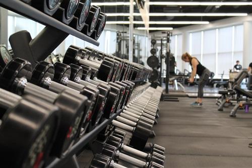 Fitnessmodelle