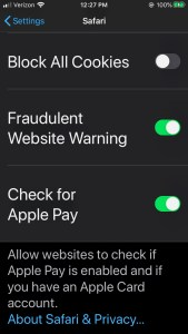 iPhone Settings for Safari