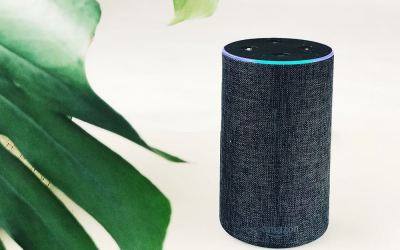 Amazon Echo How to Turn Off Green Light