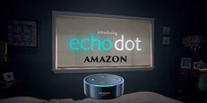 echo and bluetooth speaker