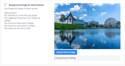 Zoom Change Background