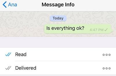 whatsapp one tick