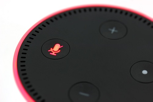 echo dot gets wet