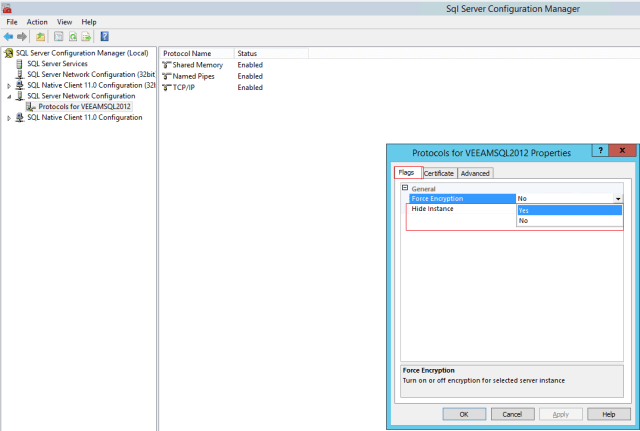 Microsoft SQL Server Instance Gizleme