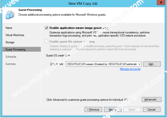 Veeam Software VM Copy