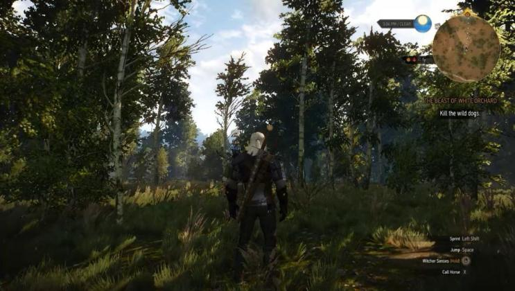 Witcher 3 [Review]: The Open World Legend 5