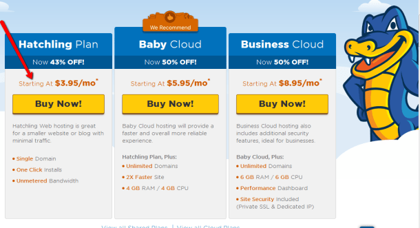 Hostgator.com hosting - How to buy web hosting from Hostgator -Choose_a_hosting_plan