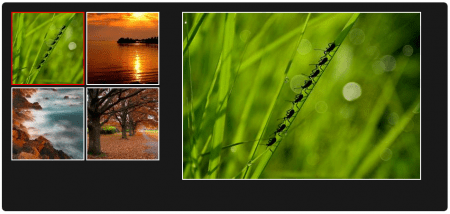 Image Gallery Featured Image