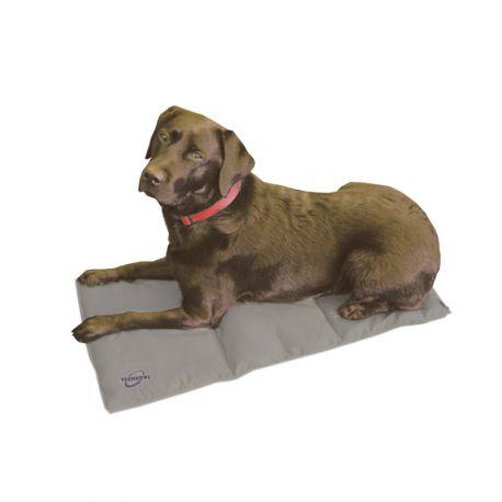 tapis rafraichissant pour chien coolpax coussin frais panier chiens