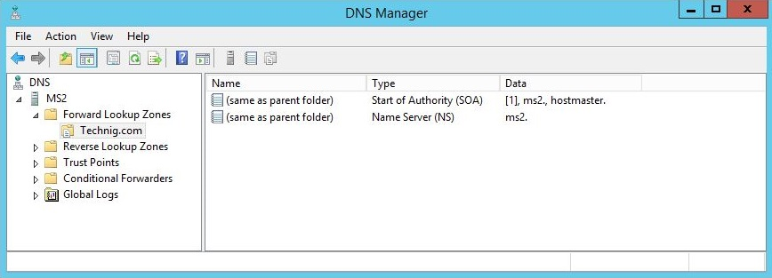 Technig DNS Server