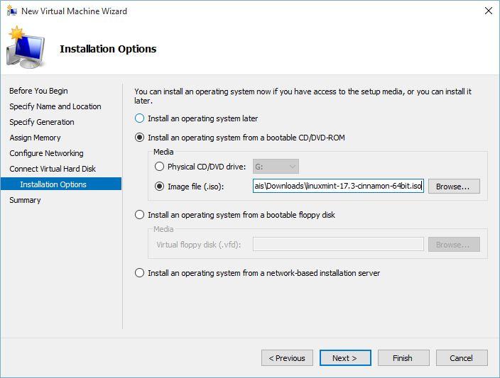 Linux Mint Installation Options on Hyper-v
