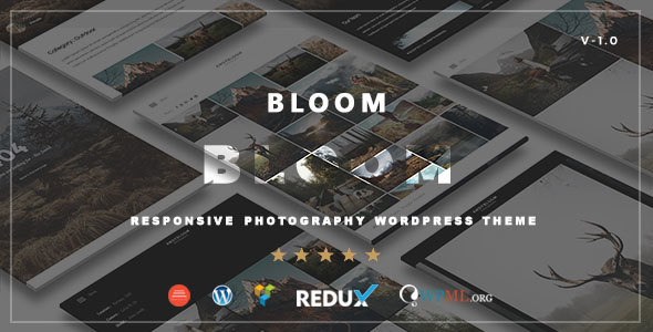 Top 10 WordPress Photography Themes 2017- 07